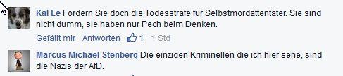 Facebook-Kommentare zu Beatrix von Storch AfD